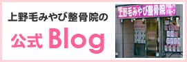 上野毛みやび鍼灸整骨院ブログ